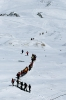 Elbrus Race 2008_148